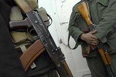 weapon, firearm, gun,