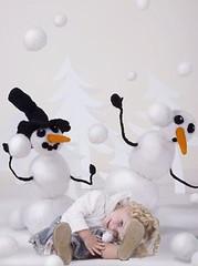 penguin(0.0), flightless bird(0.0), stuffed toy(0.0), illustration(0.0), snowman(1.0), toy(1.0),