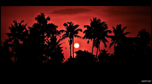 sunset silhouette kerala aplusphoto saternal