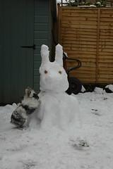 Schneehasen
