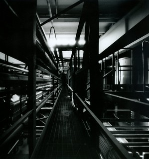 pipelines walk , pinhole version