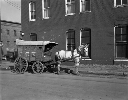 Horse and Richmond Ice wagon
