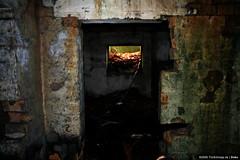abandoned #25/25