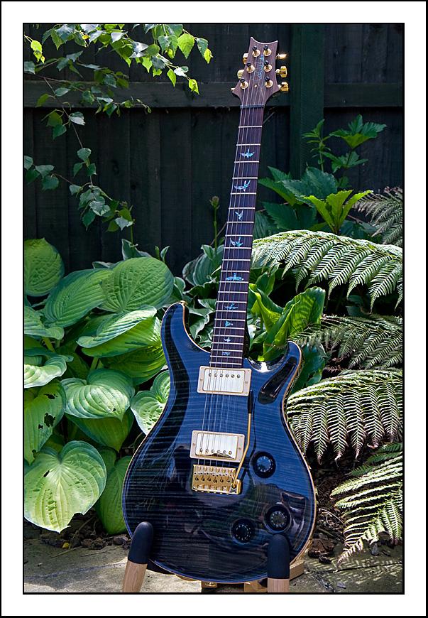 prs se custom 24 wiring diagram prs image wiring prs guitars on prs se custom 24 wiring diagram