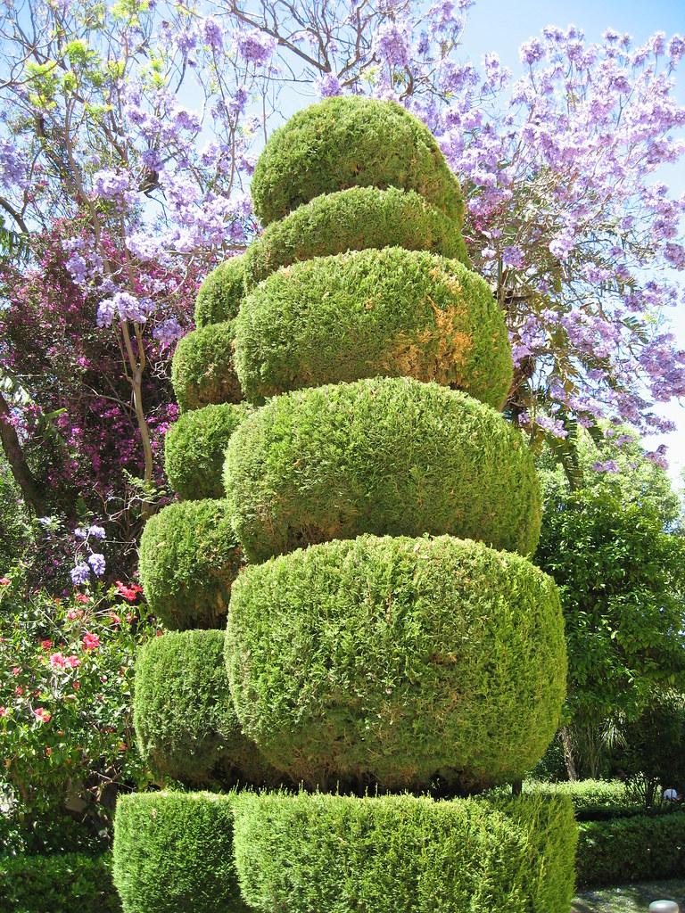 Parque genov s un jard n geom trico en el centro de c diz for Jardin geometrico