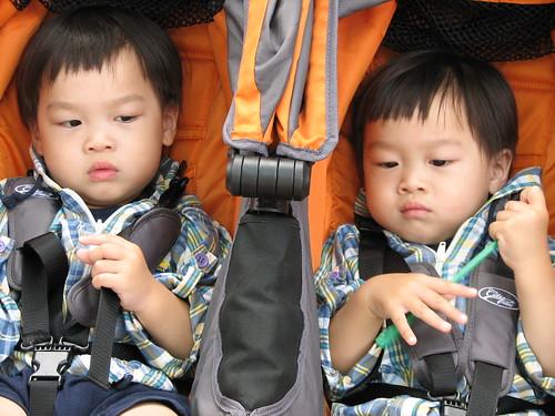 twins in stroller