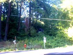 house for sale in lake oswego   DSC01406
