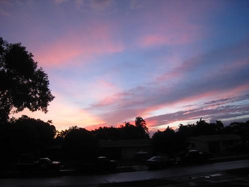 pink trees sunset sky clouds florida dusk homestead sunrays