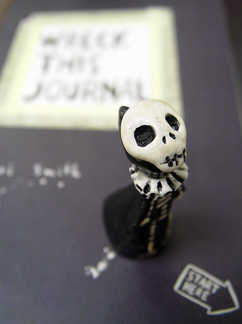 Skelly poses with Wreck This Journal