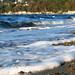Seahurst Park (November 23, 2008)