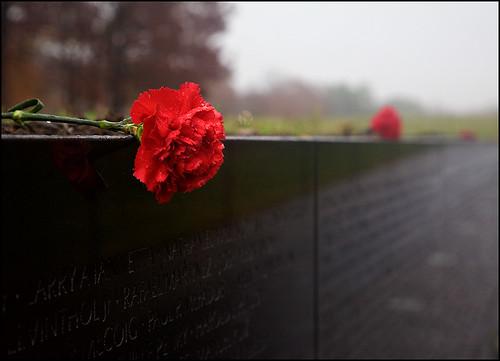 washingtondc memorial vietnamveteransmemorial otw theunforgettablepictures rubyphotographer