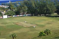 Haynes Oval