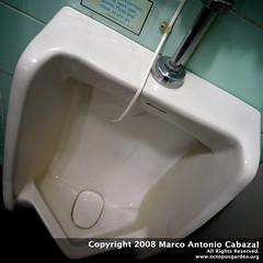 automotive exterior(0.0), wheel(0.0), bathtub(0.0), bumper(0.0), bidet(0.0), sink(0.0), toilet(1.0), urinal(1.0), plumbing fixture(1.0), toilet seat(1.0),