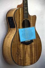 ukulele(0.0), cavaquinho(0.0), vihuela(0.0), bass guitar(0.0), cuatro(1.0), string instrument(1.0), acoustic guitar(1.0), guitar(1.0), acoustic-electric guitar(1.0), string instrument(1.0),