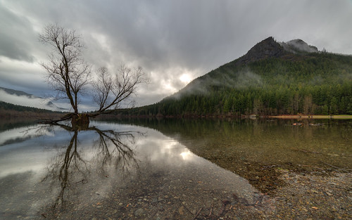 mountain reflection tree nature water canon landscape washington still day cloudy wideangle calm pacificnorthwest clearwater rattlesnakelake canoneos5dmarkiii samyang14mmf28ifedmcaspherical johnwestrock