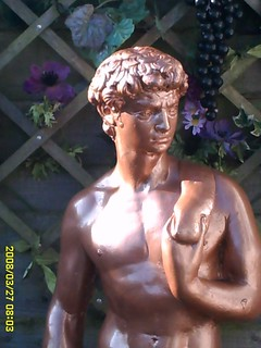 Michelangelo`s David in sunlight