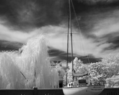 Kent County, MD - 2008 (Infrared)