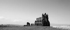 Whitby Gothic