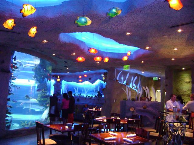Aquarium Restaurant Flickr Photo Sharing