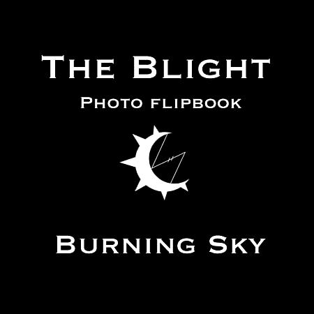 Burning Sky Skydiver Landing Burning Man 2008 Photo