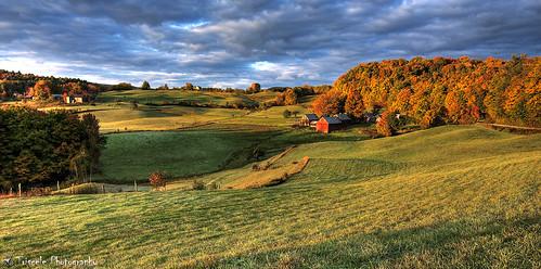 autumn fall leaves reading vermont farm foliage hdr jenne aplusphoto