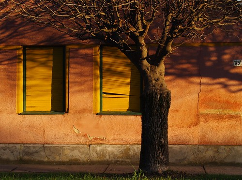 street sunset plants house tree window wall architecture town hungary afternoon olympus zuiko 1445 zd e400 olympuse400 mywinners platinumphoto superaplus aplusphoto goldenphotographer theperfectphotographer