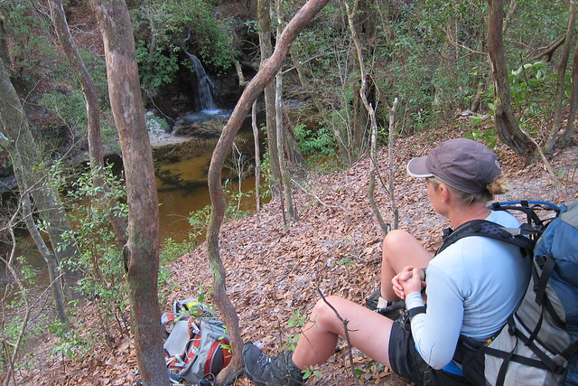 Florida Trail 118