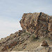 Small photo of The rock of Ma'loula