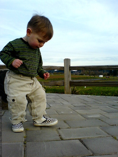 trying out his new checkered vans on a walk at luscher farm   DSC00561