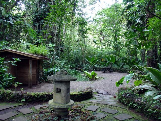Jardin botanico lankester flickr photo sharing for Jardin lankester
