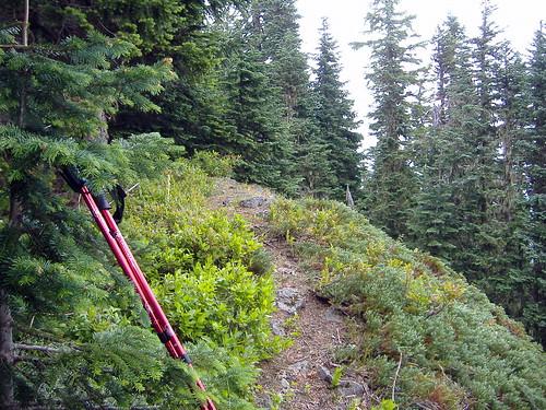 oregon hiking cascaderange centraloregoncascades willamettenationalforest opalcreekwilderness henlinemountain