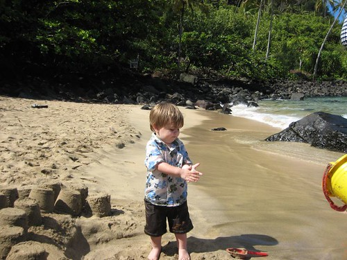 kauai IMG_5598