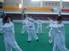 taekwondo(0.0), tang soo do(0.0), karate(0.0), chinese martial arts(0.0), striking combat sports(1.0), individual sports(1.0), contact sport(1.0), sports(1.0), combat sport(1.0), taekkyeon(1.0),