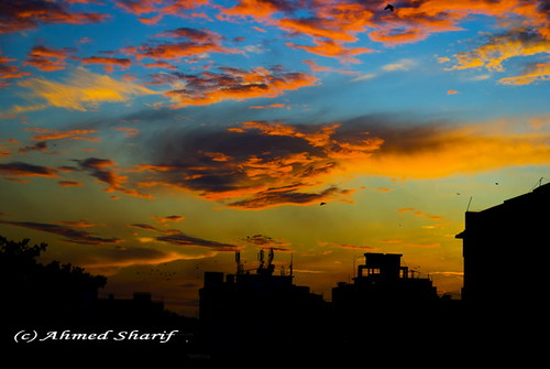 city blue autumn red wild sky orange nature yellow clouds sunrise season spectacular nikon cityscape colours silhouete dhaka sharat bangladesh daybreak sarath sharath sarat d80 mohammadpur nikkoraf2880mmf3356g