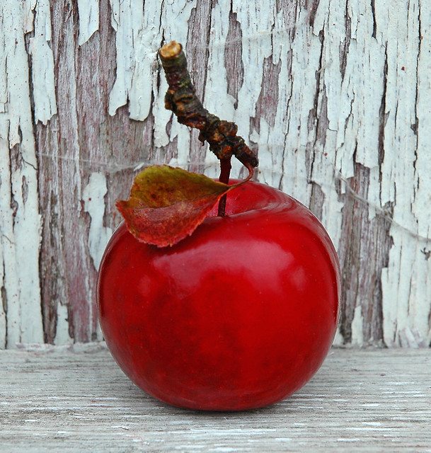 how to get rid of crab apples