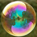 Pure Gold - Soap Bubble