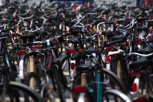 Fietsenzee op de Neude / Sea of Bikes