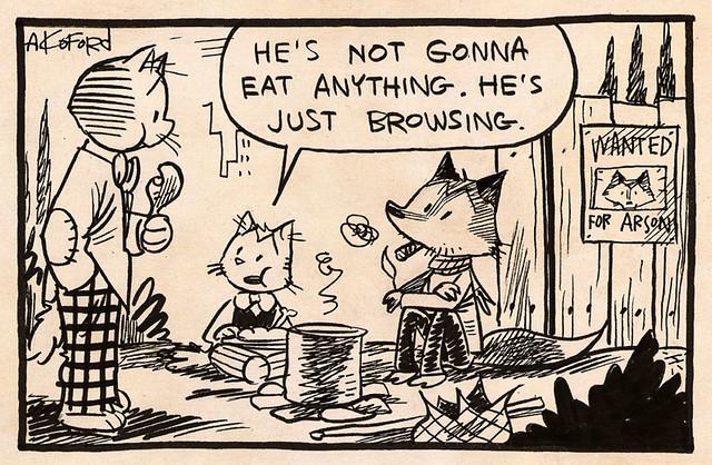 Laugh-Out-Loud Cats #866