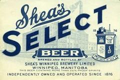 sheas beer