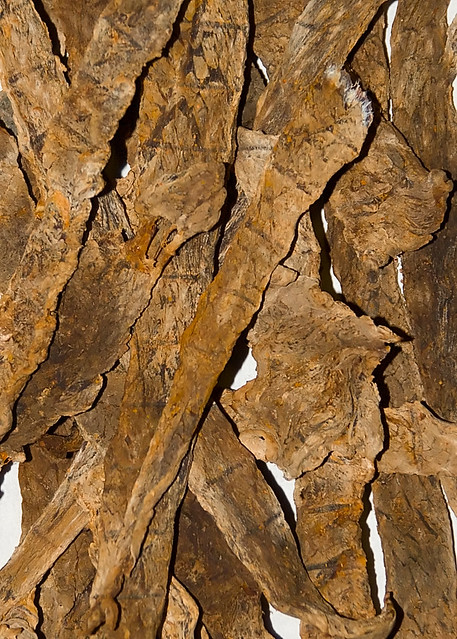 Machaca (smoked, dried, raw beef)