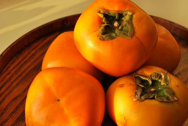 japanese persimmon / 柿 kaki