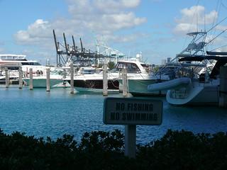 No fishing, no swimming