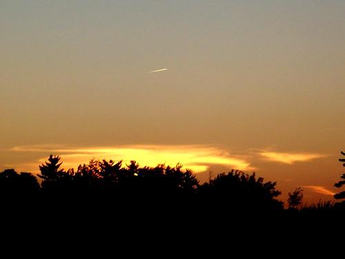 trees sunset sky sun tree home clouds evening scenery springfieldmissouri theozarks rottlady rottladyhome