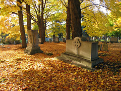 Oakwood Cemetery - Troy, NY - 07 by sebastien.barre