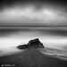 Bodega Bay by Eyal Golshani