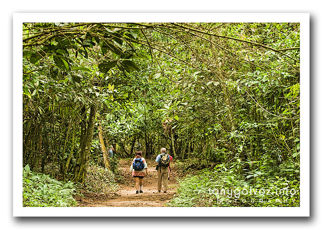qué hacer en Ilha Grande, Brasil