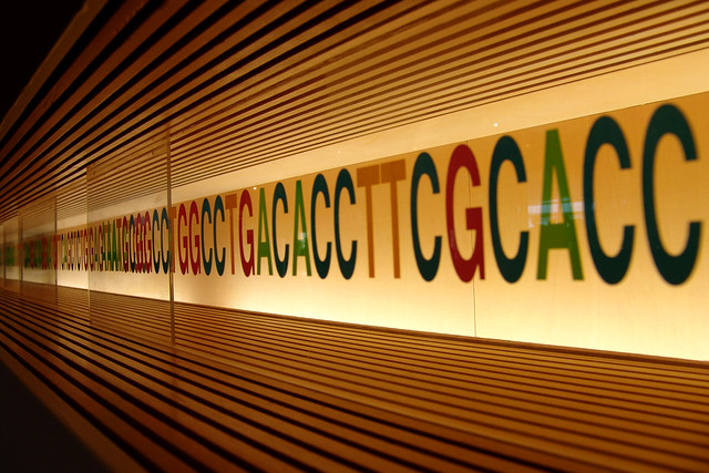 DNA from Flickr via Wylio