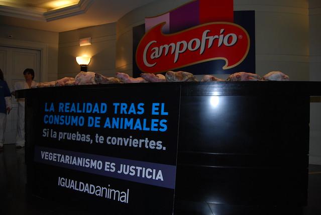 15/07/2008 - Madrid - Acción en la sede de Campofrío   Demo in Campofrio central offices