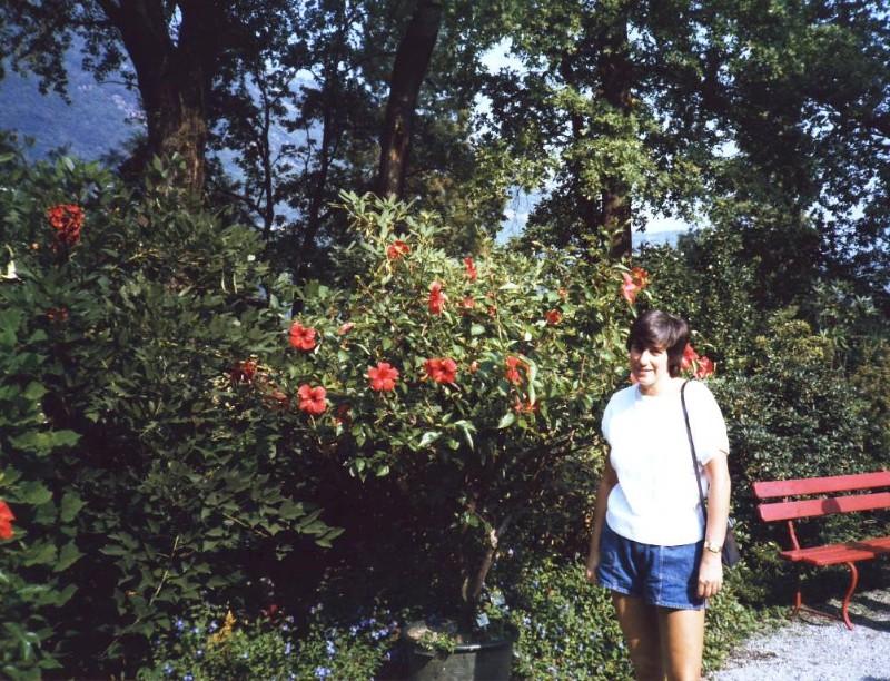 Tessin Lake of Locarno