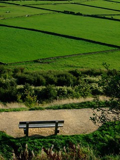 Bench at Castle Hill